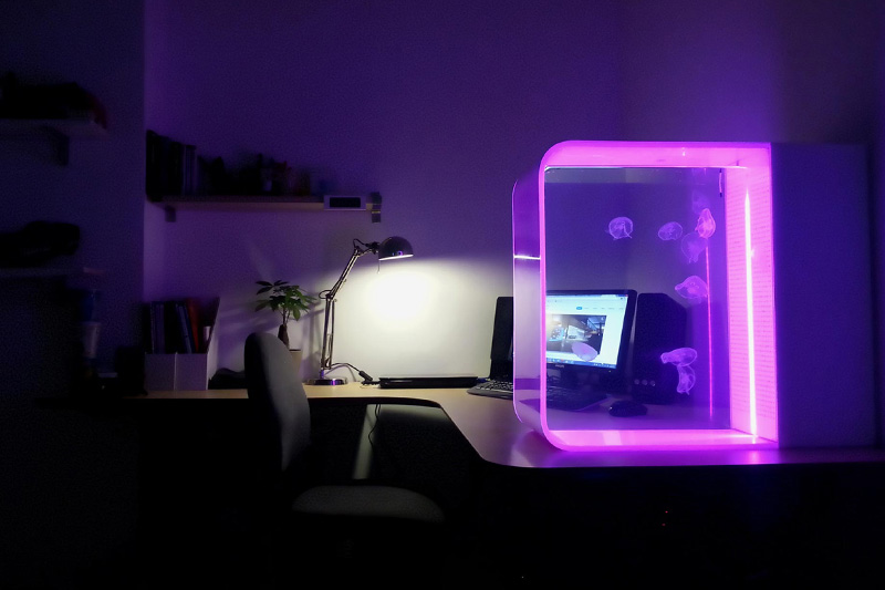 Sleek LED-Lit Jellyfish Aquarium for Your Home HYPEBEAST