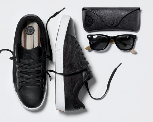 dvs luxe x ray ban