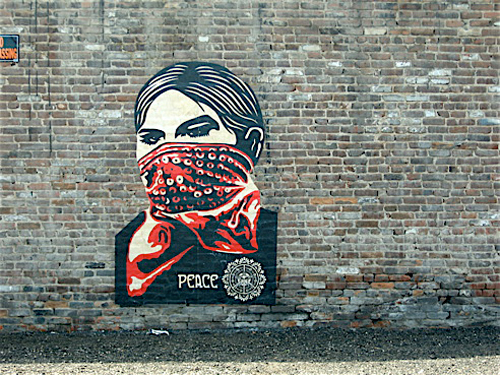 shepard fairey x democratic national convention