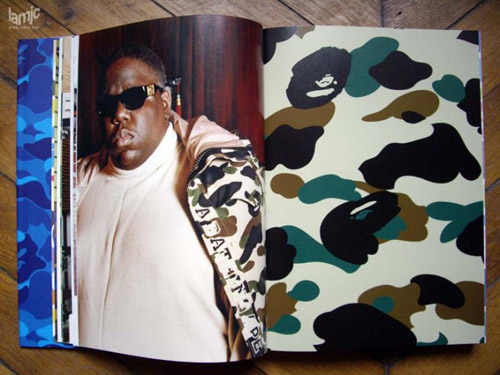 a bathing ape book review