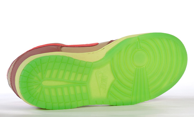nike-sb-toxic-sea-robin-dunk-low