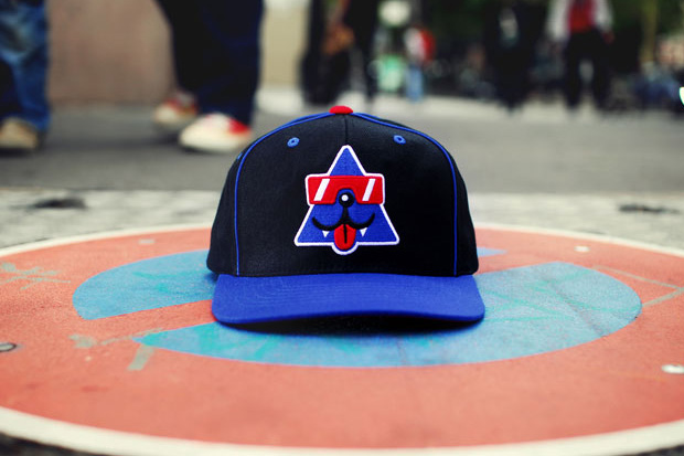 cool cats starter cap 2 Cool Cats x Starter Cap