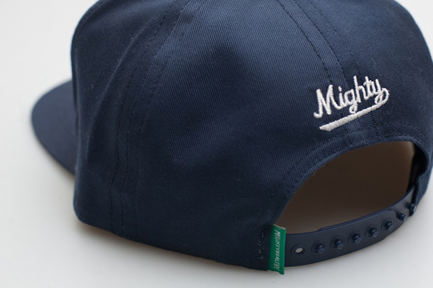 mighty healthy 2010 summer snapback caps