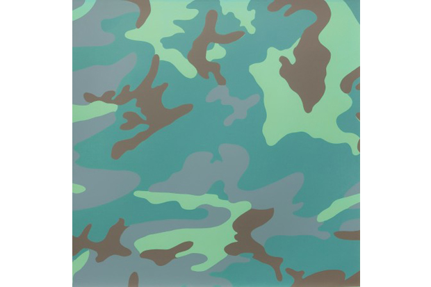 andy warhol camouflage exhibition honor fraser