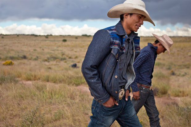 bares broncs and bulls in the navajo nation