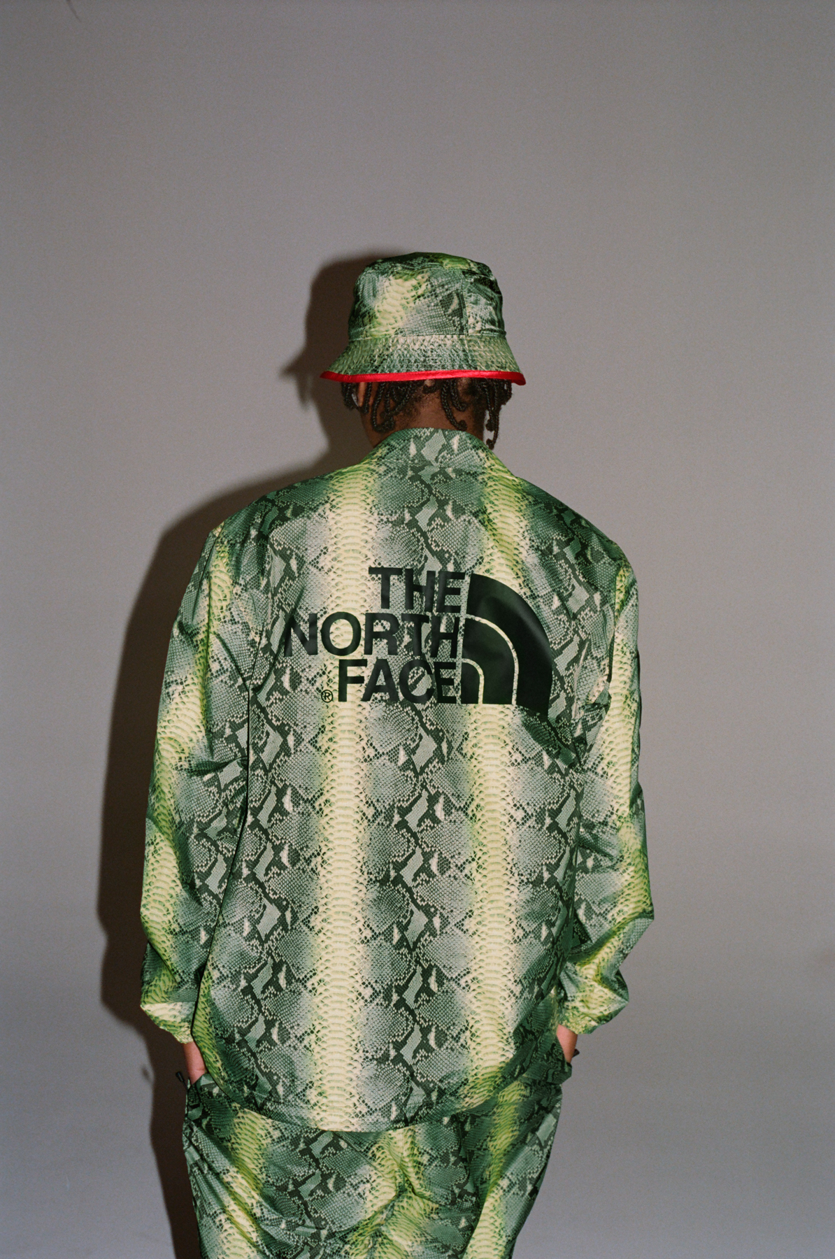 Supreme The North Face Snake lookbook