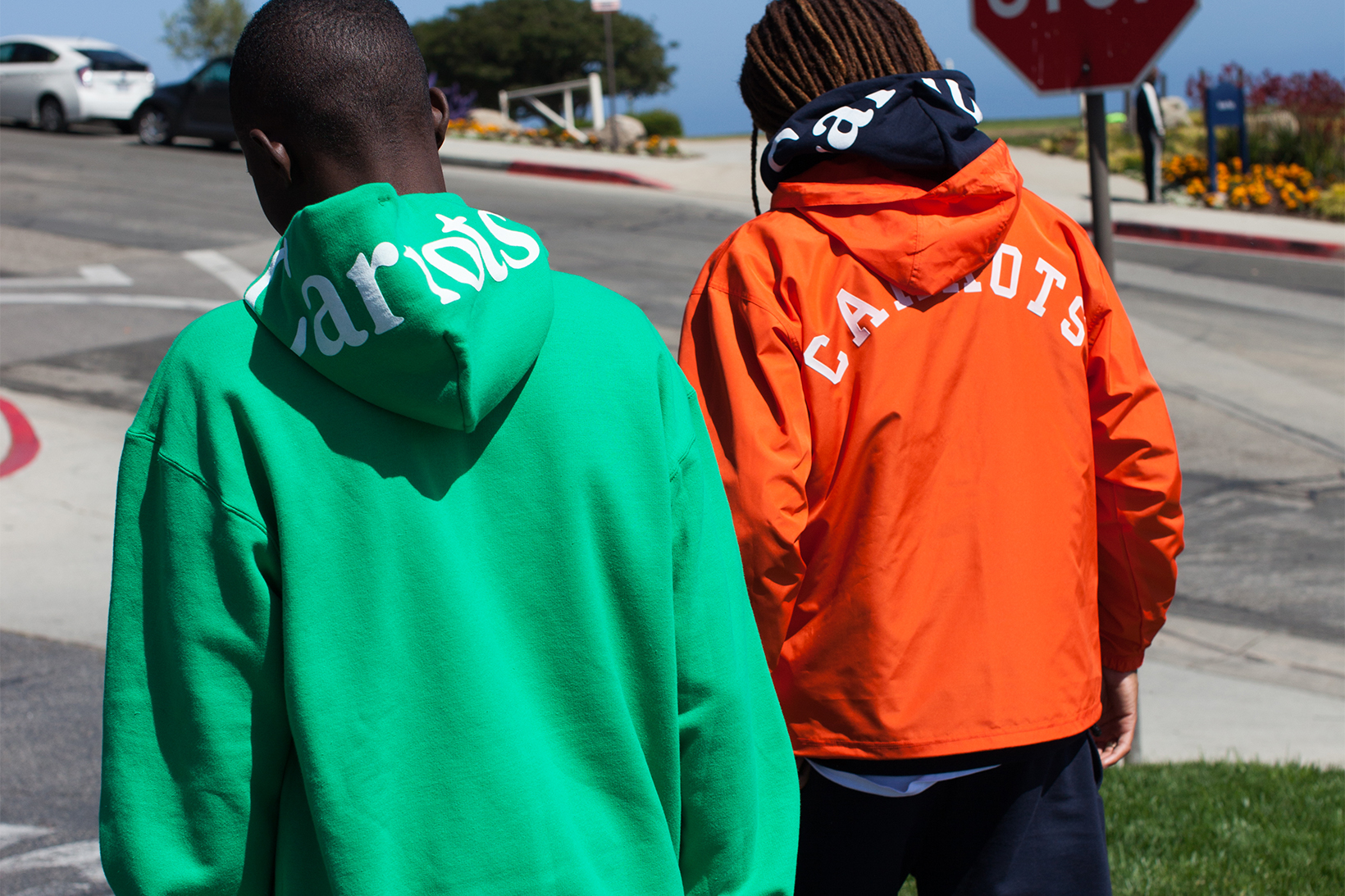 Carrots University by Champion